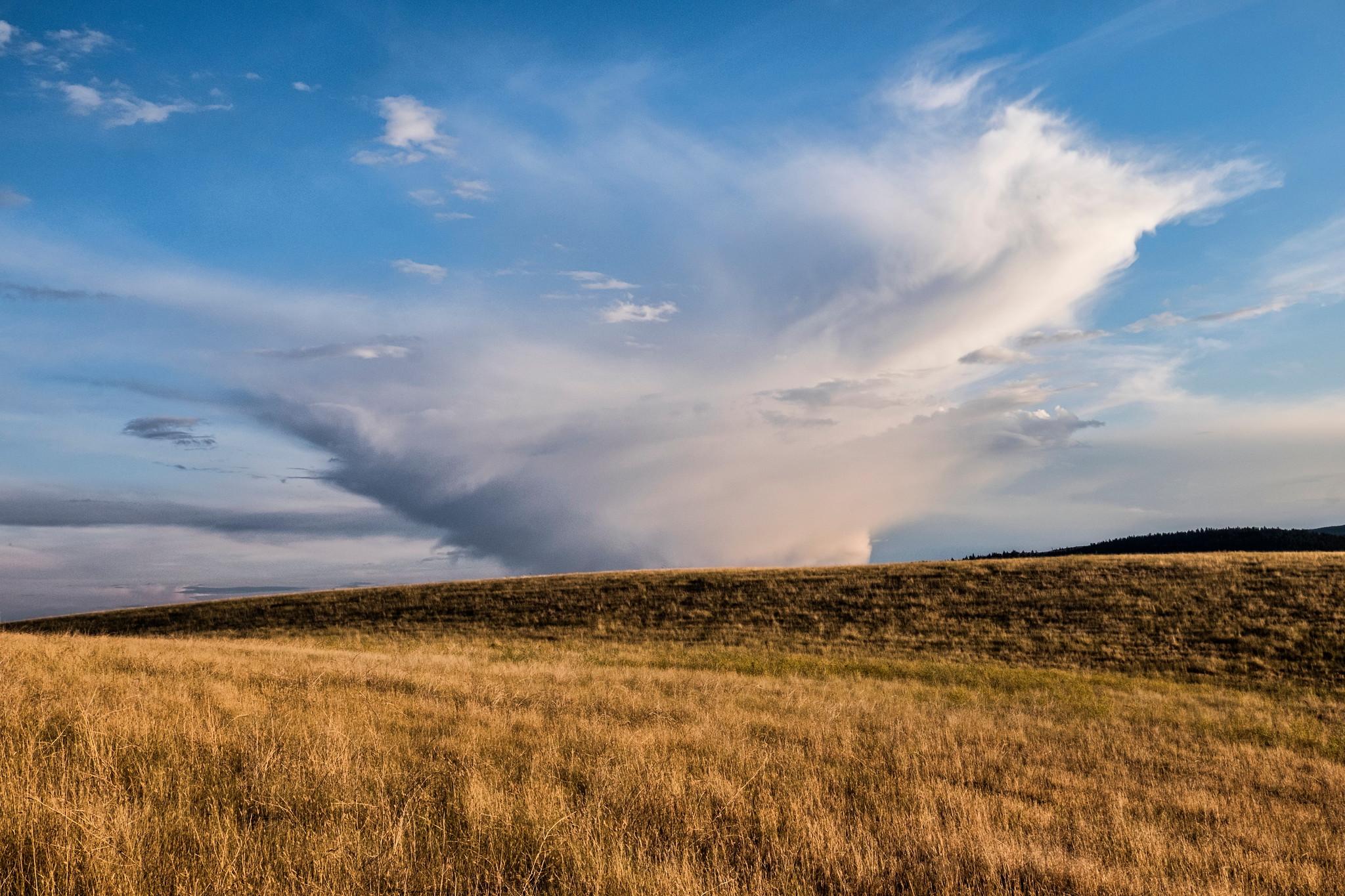 BC Grasslands - Photo by Studio Five